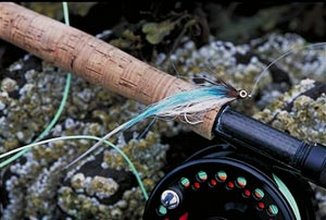 A typical bass fly